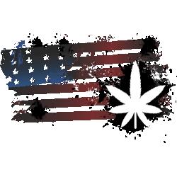 American Weed