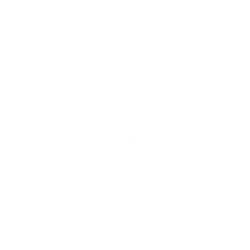 Bond & Vagabond