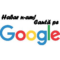 Cauta pe Google