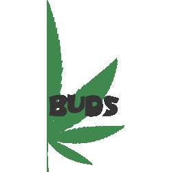 Best Buds 2