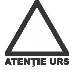 Atentie Urs