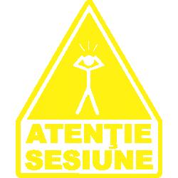 Atentie Sesiune
