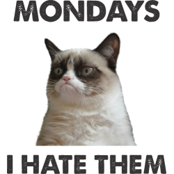 Mondays, I Hate Them