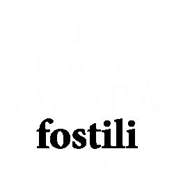 Casa Moara Fostili