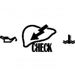 Check liver light