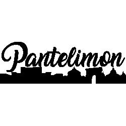 Tricou Pantelimon