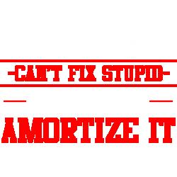 Accountants Can't Fix Stupid