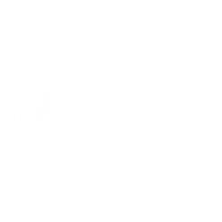 Evolution Alcohol