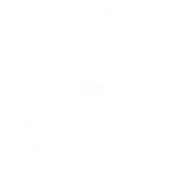 Mama Bear 2
