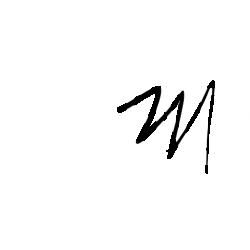 Tricou Opulenta