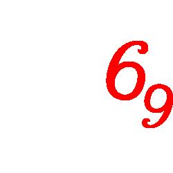 Tricou 69