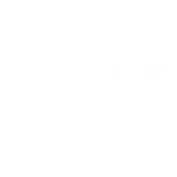 Tricou Fina