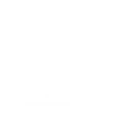 Tricou Trabant
