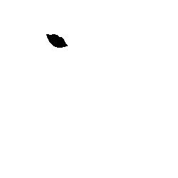 Beauty And The Beard II