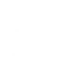 Evolutia Contabilului