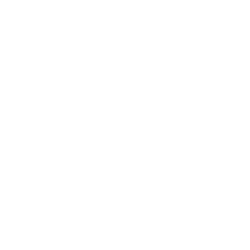 Team Bride IV