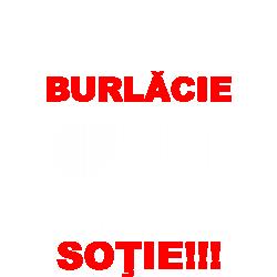 Bye Bye Burlacie