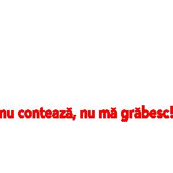 Alcoolul Omoara Incet