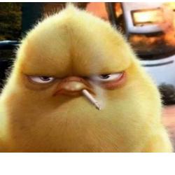 Ai Vreo Problema?
