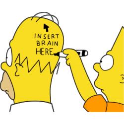 Homer Simpson Insert Brain Here