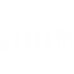 Evolutia Mecanicului