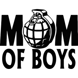 Mom Of Boys 2